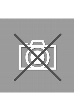 DEUS EX MACHINA-THE LANDIE-1