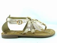 la paire de chaussures gaie de metamorfose que vous avez